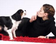 Отучить собаку лаять дома