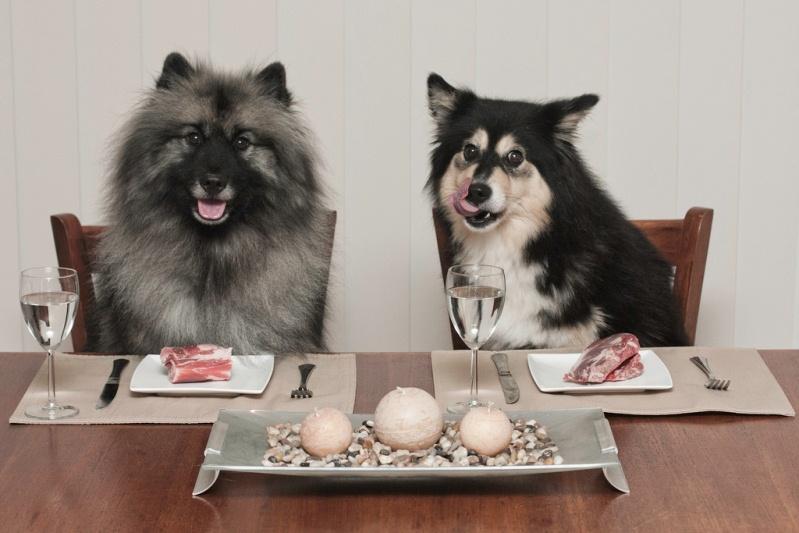 как перевести собаку на натуральный корм